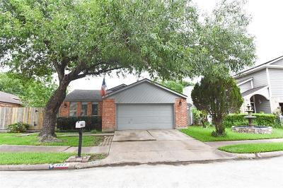 Houston Single Family Home For Sale: 3802 Moss Tree Road