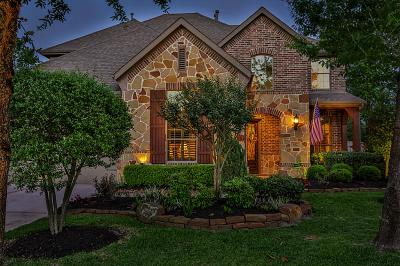 Montgomery Single Family Home For Sale: 102 Dewberry Place