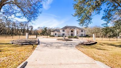 Missouri City Single Family Home For Sale: 223 Star Lake Drive