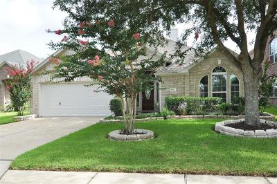 Katy Single Family Home For Sale: 19422 Colony Trail Lane