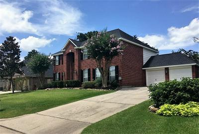 Tomball Single Family Home For Sale: 31427 Bearing Star Lane