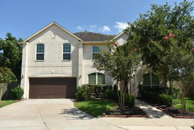 Sienna Plantation Single Family Home For Sale: 3 Apple Branch Court