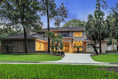 Houston Single Family Home For Sale: 8706 Stable Crest Boulevard