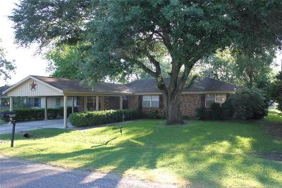 Brazoria Single Family Home For Sale: 214 Avenue E
