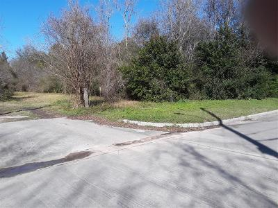 Tomball Residential Lots & Land For Sale: Mechanic Street