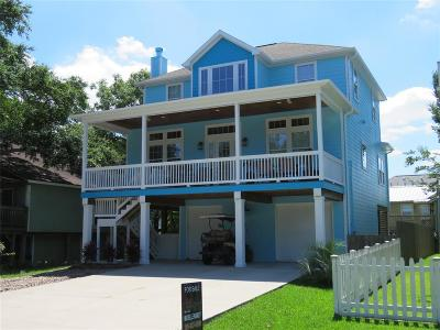 Clear Lake Shores Single Family Home For Sale: 704 E Shore Drive