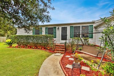 Conroe Single Family Home For Sale: 16250 Daisy View Court