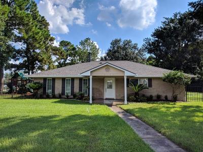 Houston Single Family Home For Sale: 10103 Brighton Lane