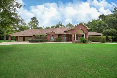 Conroe Single Family Home For Sale: 10982 Lake Forest Drive