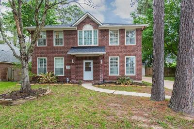 Houston Single Family Home For Sale: 15810 Hollow Rock Drive