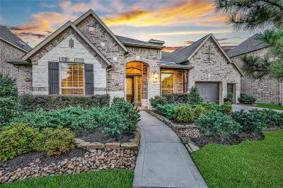New Caney Single Family Home For Sale: 17302 Inyo National Drive