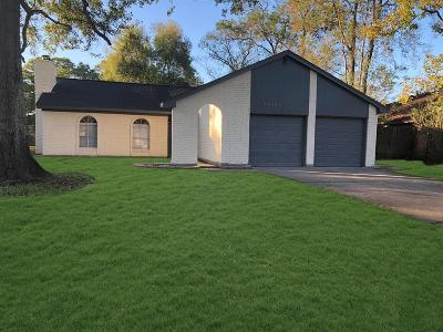 Houston Single Family Home For Sale: 12626 Fern Forest Street Drive