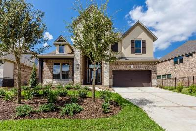 The Woodlands Single Family Home For Sale: 45 Botanical Vista Drive