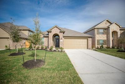 Galveston County Single Family Home For Sale: 611 Liberty Pines Lane