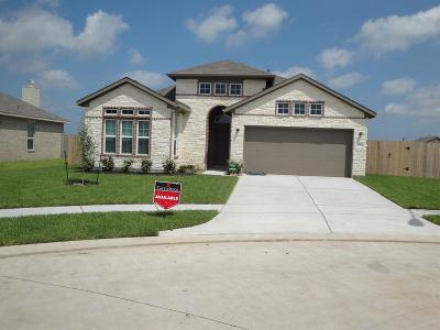 Texas City Single Family Home For Sale: 7726 Amber Court