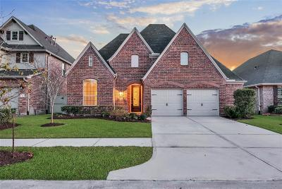 Conroe Single Family Home For Sale: 9911 Downey Emerald Drive