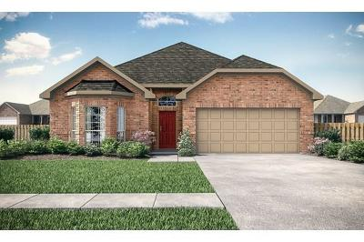 Rosenberg Single Family Home For Sale: 2622 Patricia Crossing