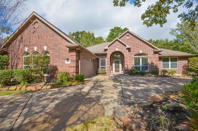 Summerwood Single Family Home For Sale: 12811 Summerwood Lakes Court