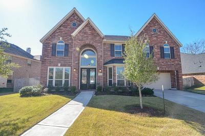 Riverstone Single Family Home For Sale: 3923 Birch Vale Lane