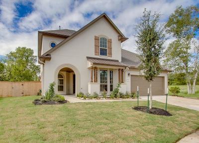 Sugar Land Single Family Home For Sale: 4906 Ava Meadows Lane