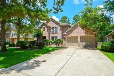 Spring Single Family Home For Sale: 14 N Goldenvine Circle