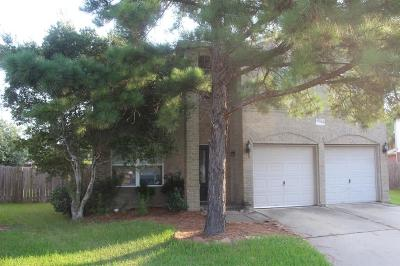Tomball Single Family Home For Sale: 19130 Edens Dawn Drive