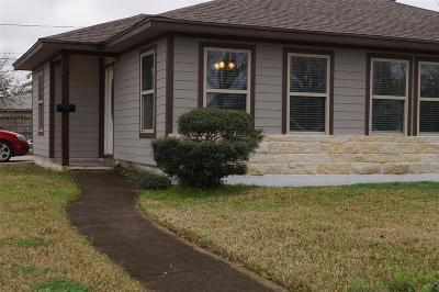 Houston Single Family Home For Sale: 1235 Sulphur Street