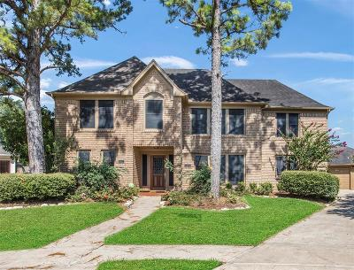 Houston Single Family Home For Sale: 15202 Poplar Springs Lane