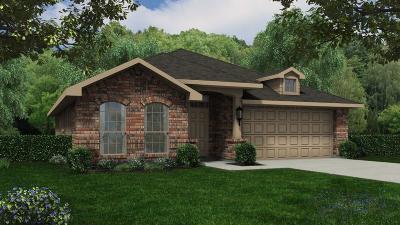 Conroe Single Family Home For Sale: 2533 Wood Park Boulevard