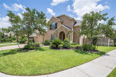 Manvel Single Family Home For Sale: 3047 Rabbit Brush Lane