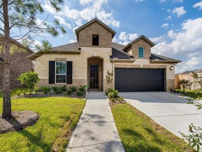 Pearland Single Family Home For Sale: 2206 Orono Landing Lane