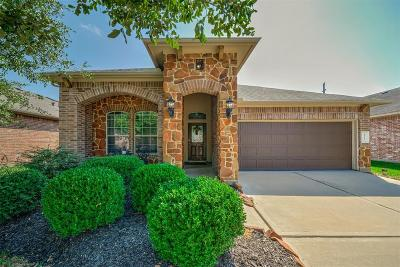 Cypress Single Family Home For Sale: 8702 Debbie Terrace Drive