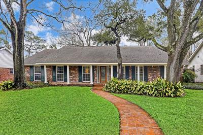 Houston Single Family Home For Sale: 242 Stoney Creek Drive