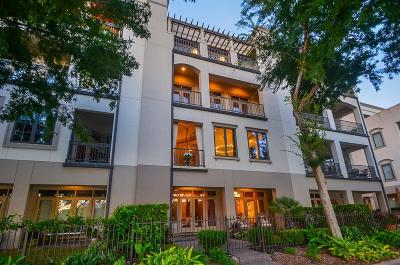 Sugar Land Condo/Townhouse For Sale: 1340 Lake Pointe Parkway