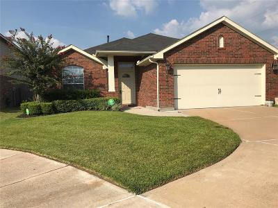 Katy Single Family Home For Sale: 1635 Taylor Mills Court