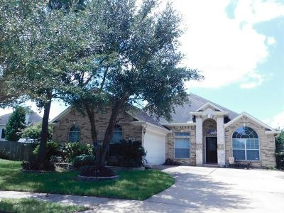 Houston Single Family Home For Sale: 16522 Bluff Springs Drive