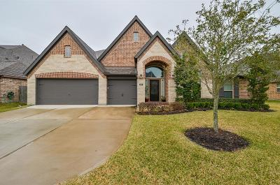 Pearland Single Family Home For Sale: 3207 Tamara Creek Lane