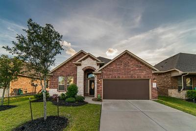 Cypress Single Family Home For Sale: 8811 Austin Thomas Drive