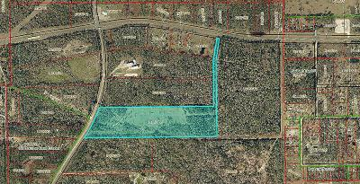 Conroe Farm & Ranch For Sale: 16621 Old Houston