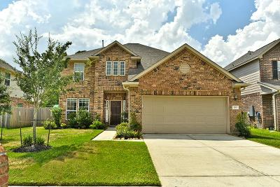 Baytown Single Family Home For Sale: 126 Persimmon Drive