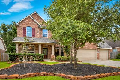The Woodlands Single Family Home For Sale: 43 Matisse Meadow