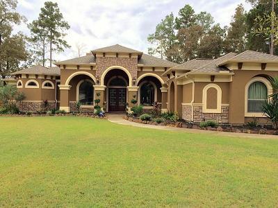 Porter Single Family Home For Sale: 23124 Volga Drive