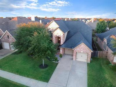 Katy Single Family Home For Sale: 26030 Galena Stone Lane