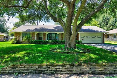Houston Single Family Home For Sale: 8907 Greiner Drive