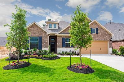 Tomball Single Family Home For Sale: 9315 Victory Canyon