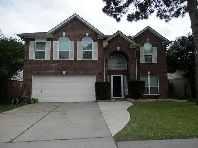 Katy Single Family Home For Sale: 6418 Founding Drive