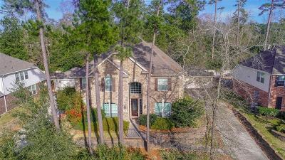 Conroe Single Family Home For Sale: 2525 Eagle Post Drive