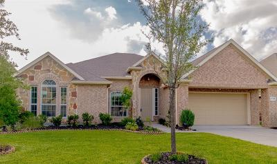 Tomball Single Family Home For Sale: 13214 Edison Trace Lane