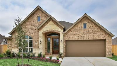 New Caney Single Family Home For Sale: 18830 Capalona Court