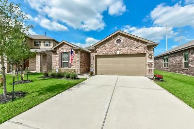 Katy Single Family Home For Sale: 3814 Aubergine Springs Lane
